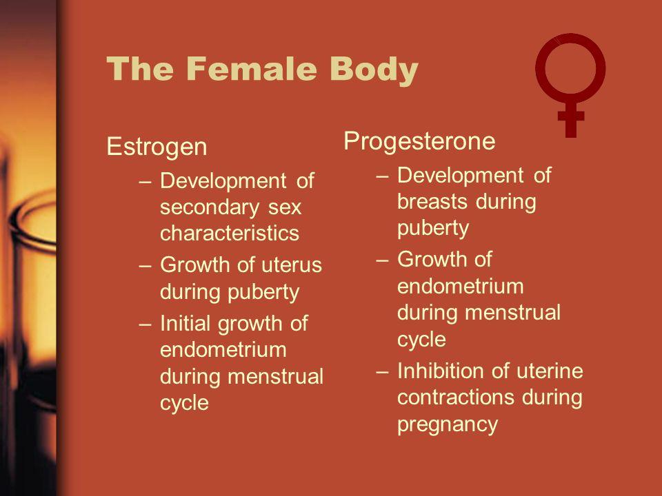 Prometrium Vs Progesterone