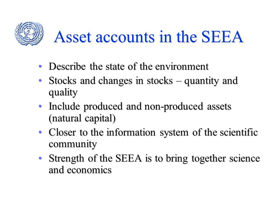 Asset accounts in the SEEA