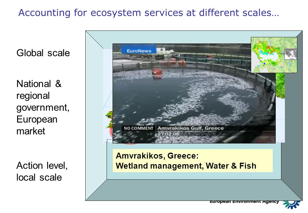 Accounting for ecosystem services at different scales…