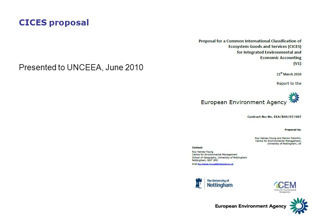 CICES proposal Presented to UNCEEA, June 2010