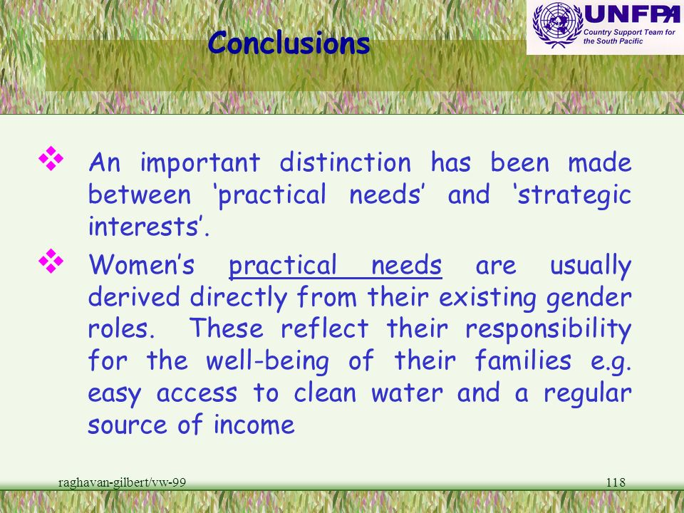 Conclusions An important distinction has been made between 'practical needs' and 'strategic interests'.