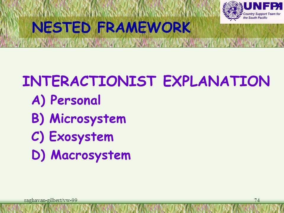NESTED FRAMEWORK INTERACTIONIST EXPLANATION A) Personal B) Microsystem