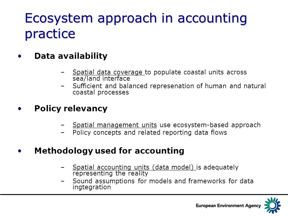 Ecosystem approach in accounting practice