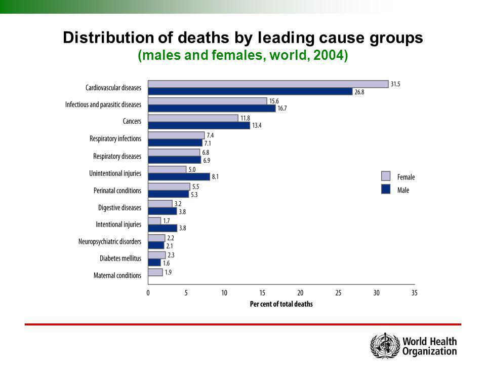 Distribution of deaths by leading cause groups (males and females, world, 2004)