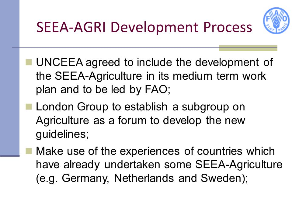 SEEA-AGRI Development Process