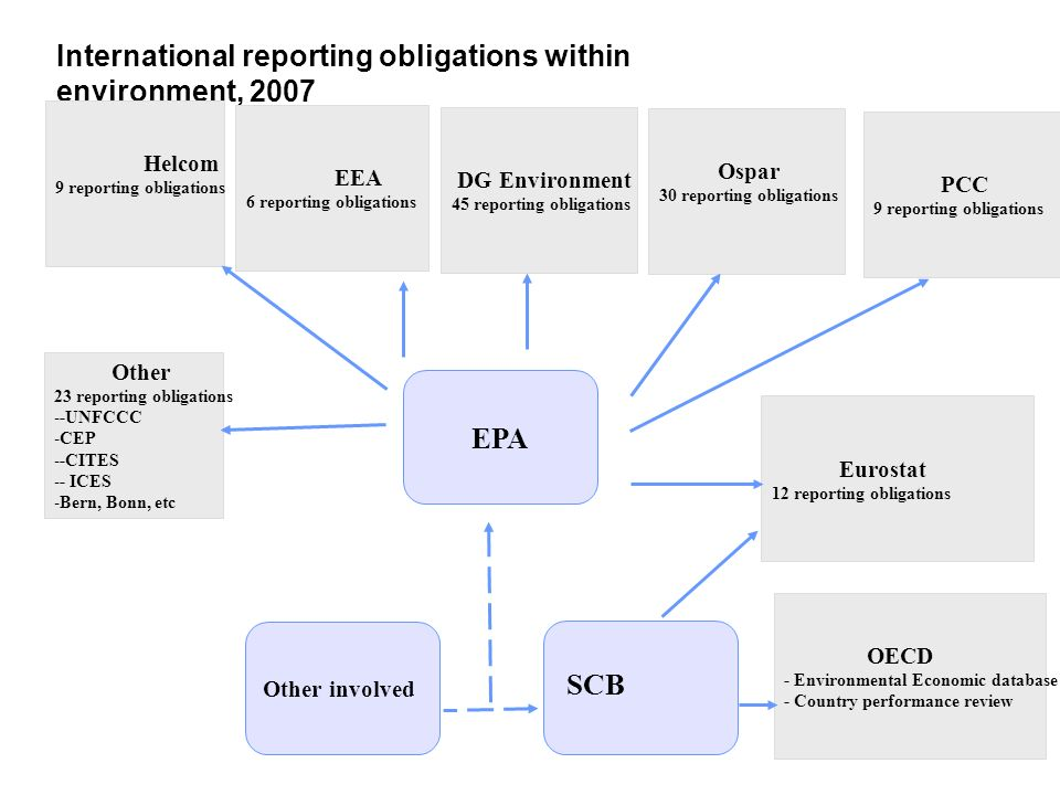 International reporting obligations within environment, 2007