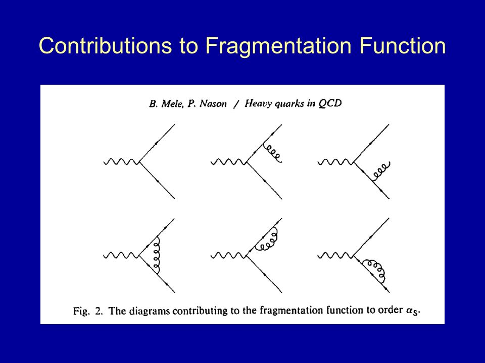 Contributions to Fragmentation Function