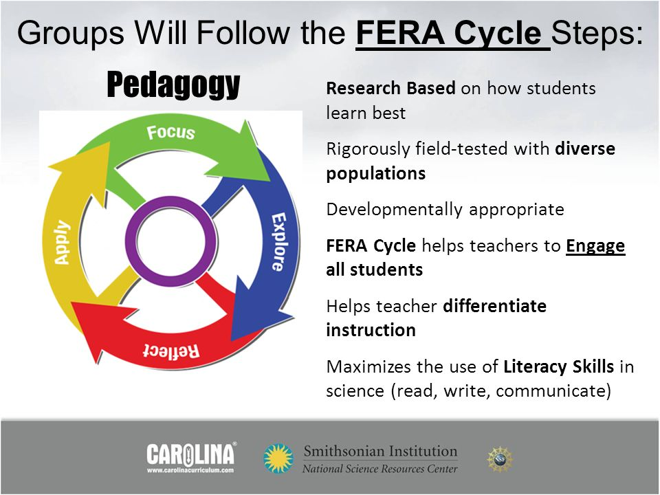 Groups Will Follow the FERA Cycle Steps: