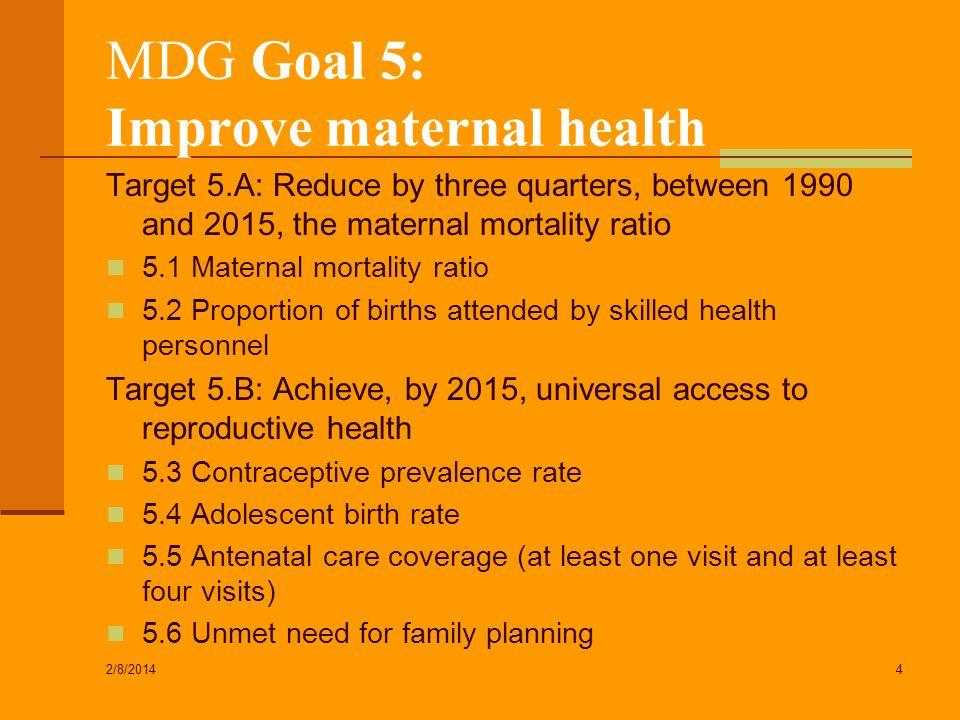 MDG Goal 5: Improve maternal health