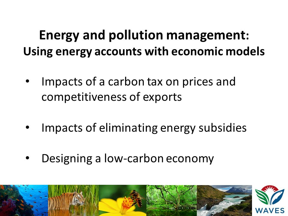Energy and pollution management: