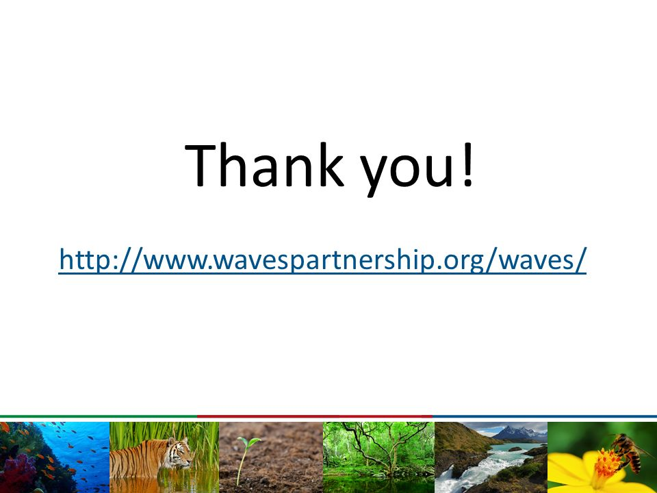 Thank you! http://www.wavespartnership.org/waves/