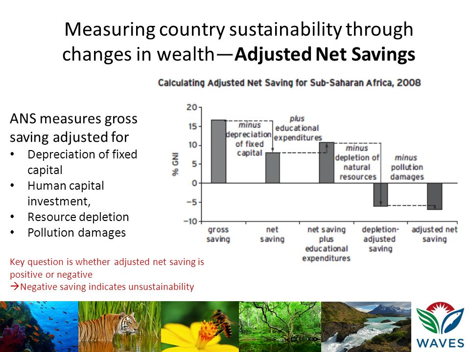Measuring country sustainability through changes in wealth—Adjusted Net Savings