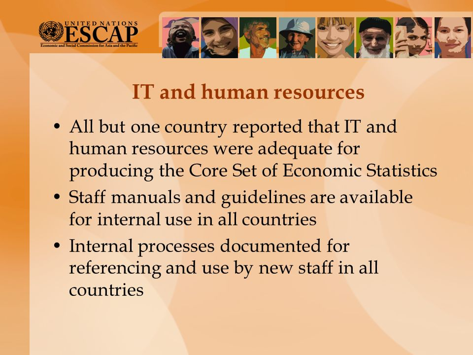 IT and human resources All but one country reported that IT and human resources were adequate for producing the Core Set of Economic Statistics.