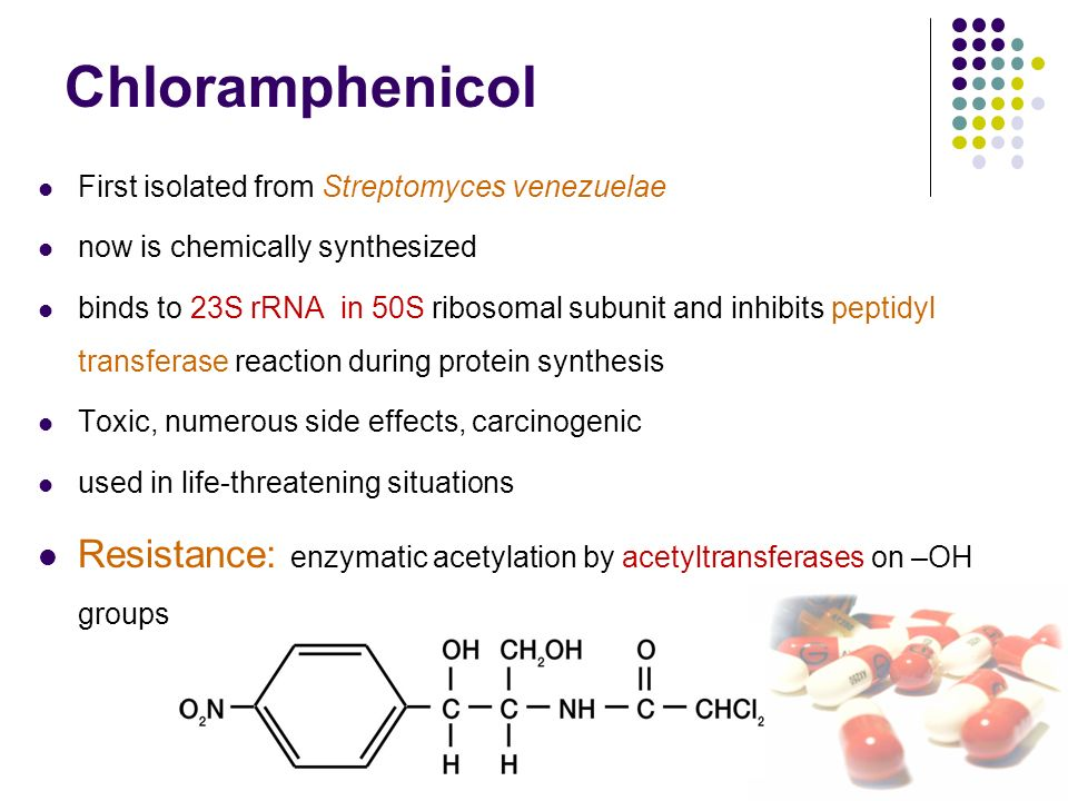 Chloramphenicol Side Effects In Canines