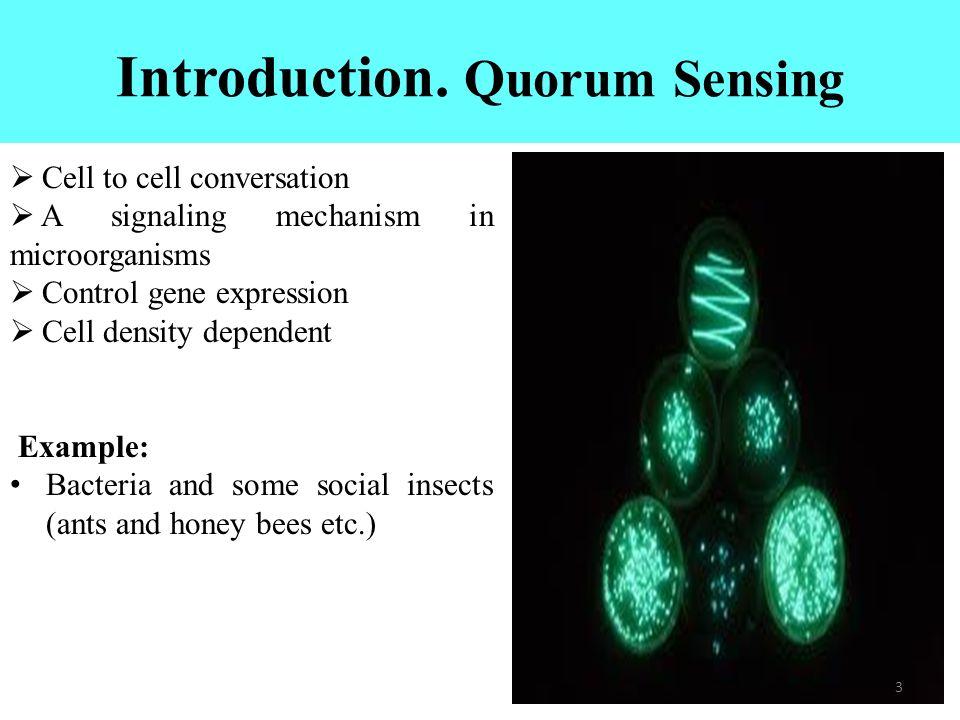 semantics of quorum sensing and quorum quenching