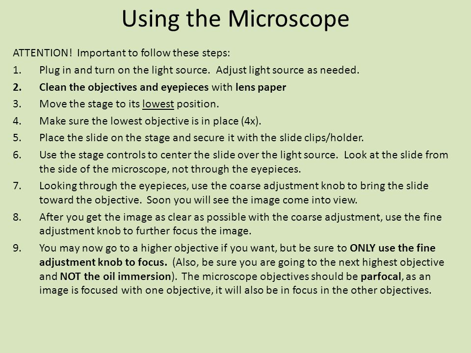 Using the Microscope Lab 1 Biology ppt video online download