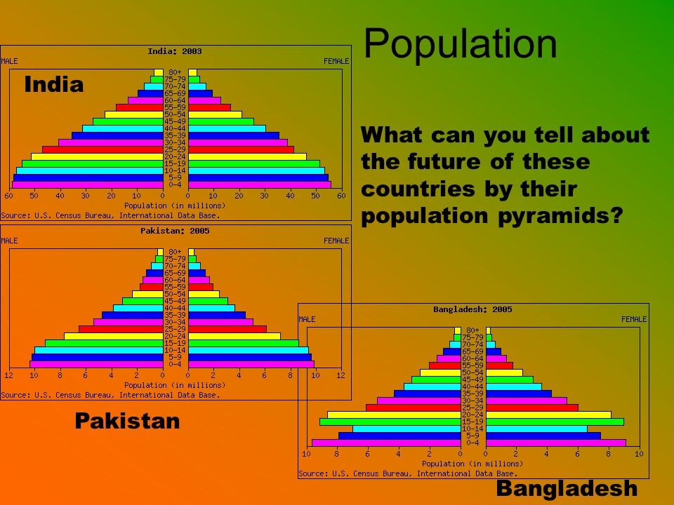 Population India. What can you tell about the future of these countries by their population pyramids