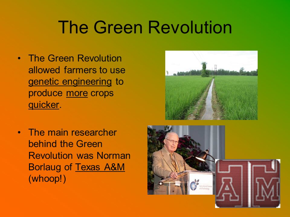 The Green Revolution The Green Revolution allowed farmers to use genetic engineering to produce more crops quicker.