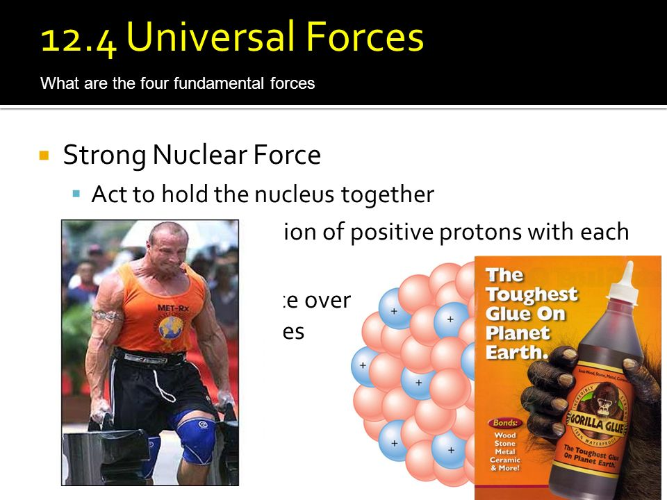 12.4 Universal Forces Strong Nuclear Force