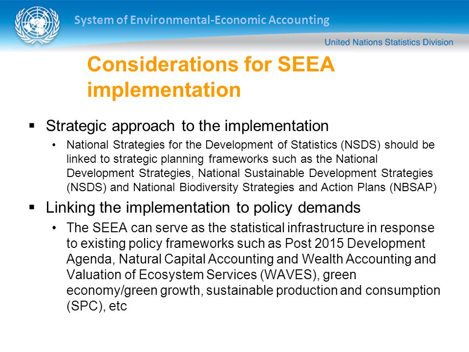 Considerations for SEEA implementation
