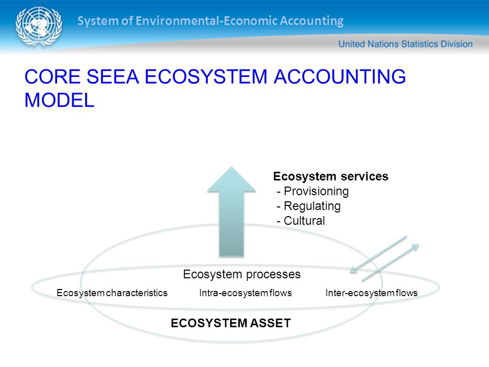 CORE SEEA ECOSYSTEM ACCOUNTING MODEL