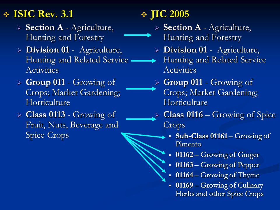 ISIC Rev. 3.1 JIC 2005 Section A - Agriculture, Hunting and Forestry