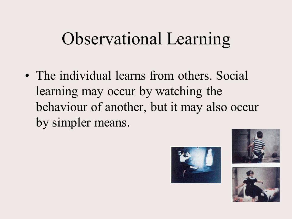 what is observational learning and how it works Full-text paper (pdf): observational learning | researchgate, the professional  network for  induction of new repertoires, can inform the work.