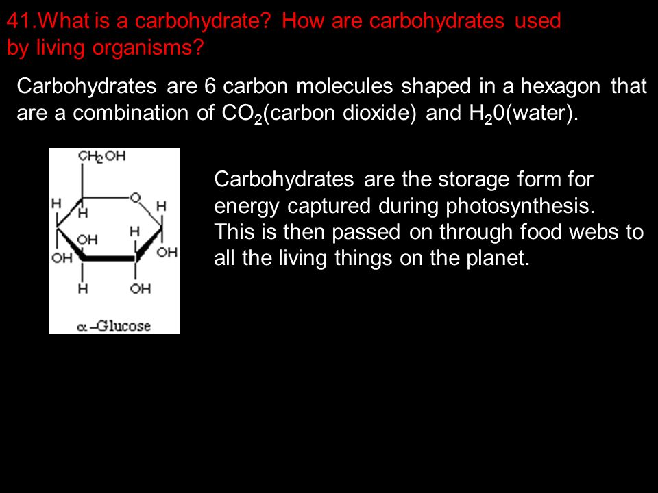 1.What organelles/parts do prokaryotes have? Ribosomes, - ppt download