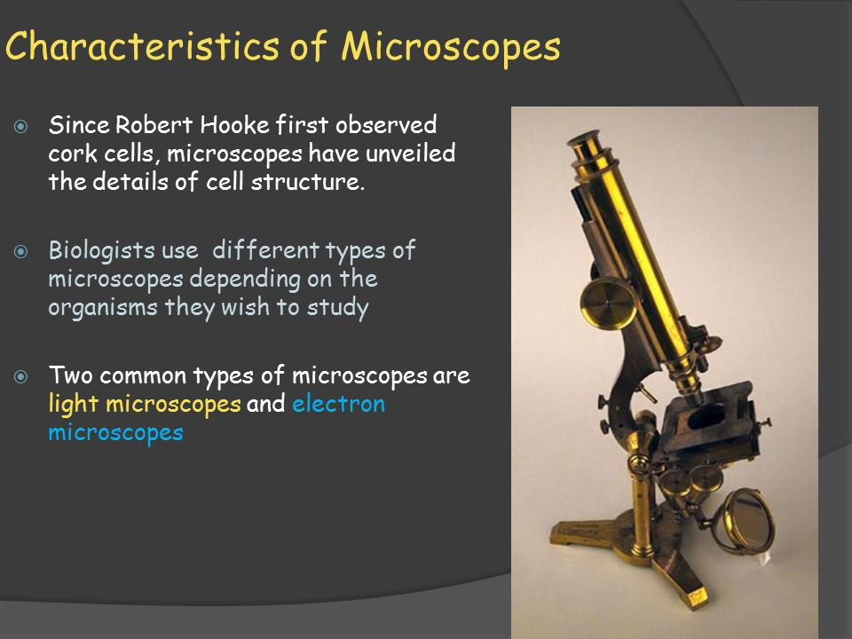 different types of microscopes pdf