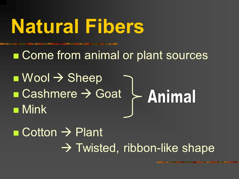 Chapter 8 Hairs Amp Fibers Ppt Video Online Download