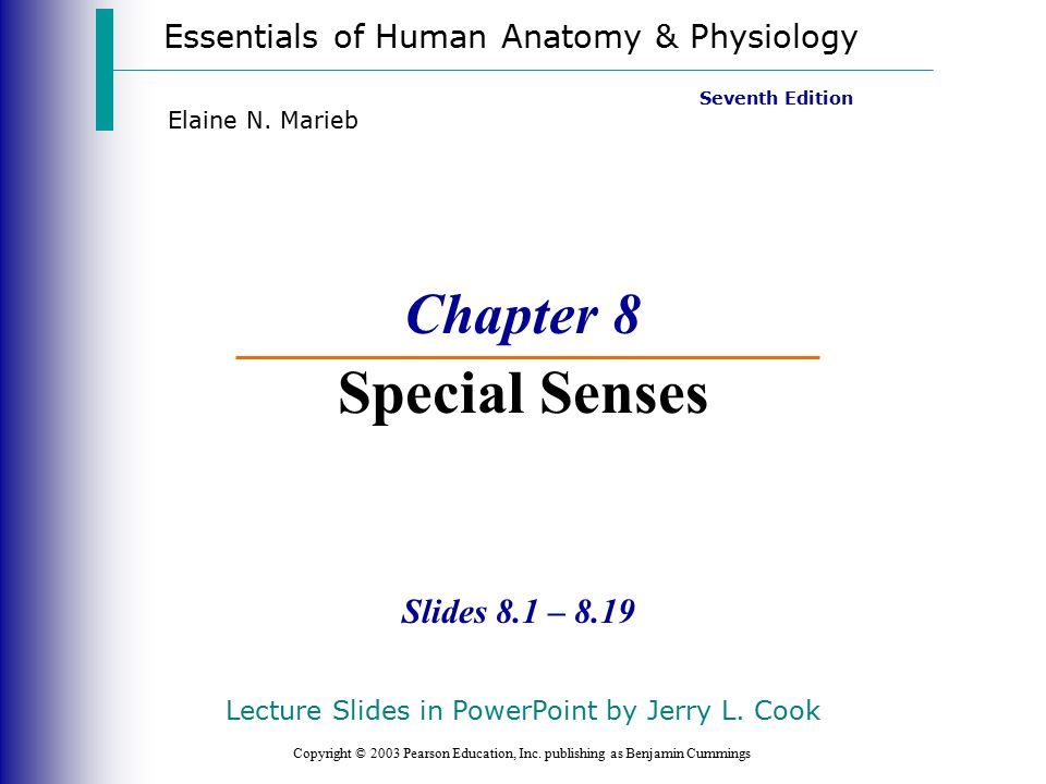 Chapter 8 Special Senses - ppt video online download