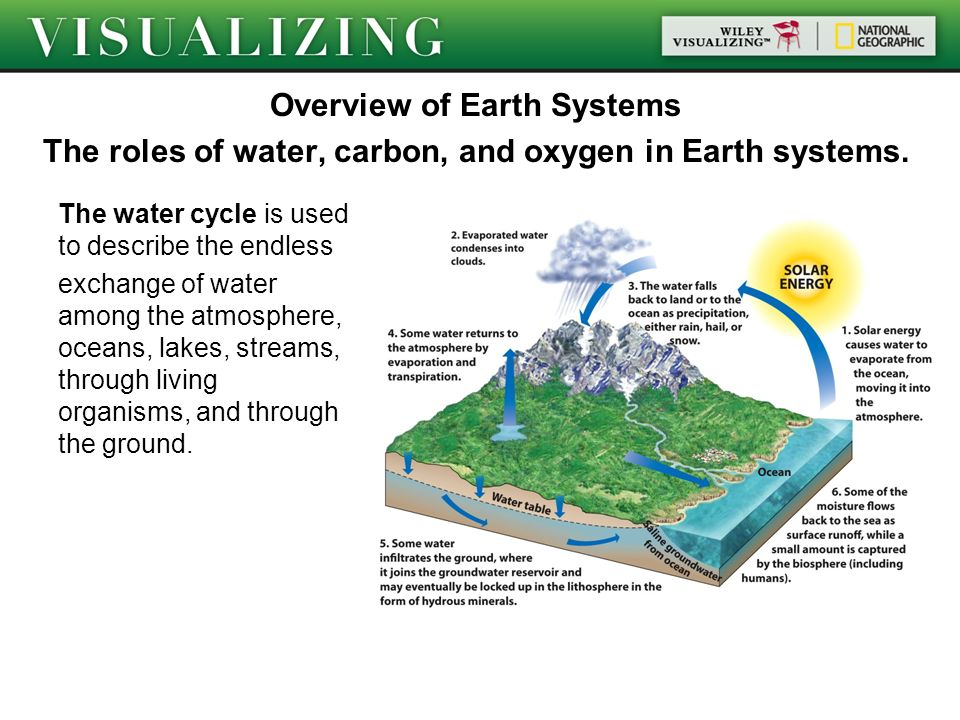 When Rivers Caught Fire: A Brief History of Earth Day (with Lesson Plan)