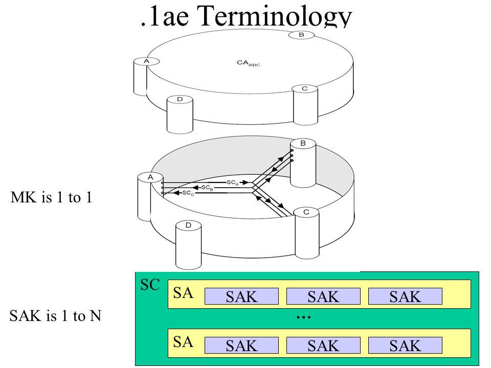 .1ae Terminology MK is 1 to 1 SC SA SAK SAK SAK SAK is 1 to N … SA SAK
