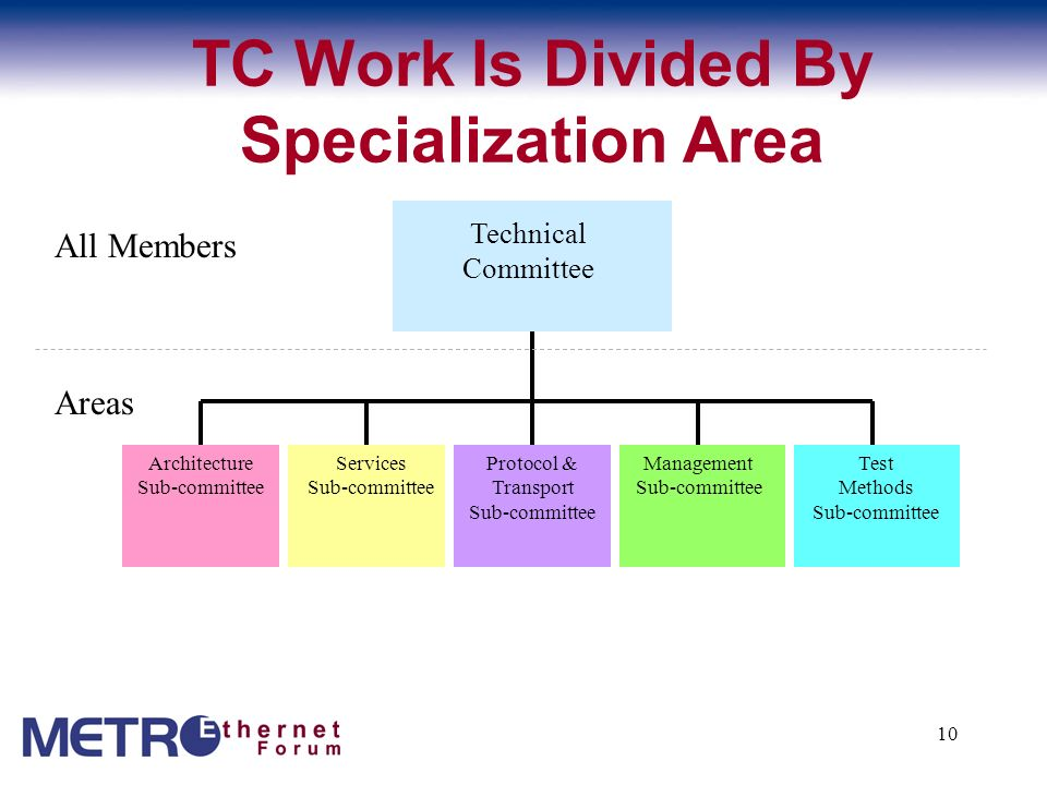 TC Work Is Divided By Specialization Area