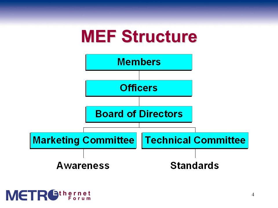 MEF Structure