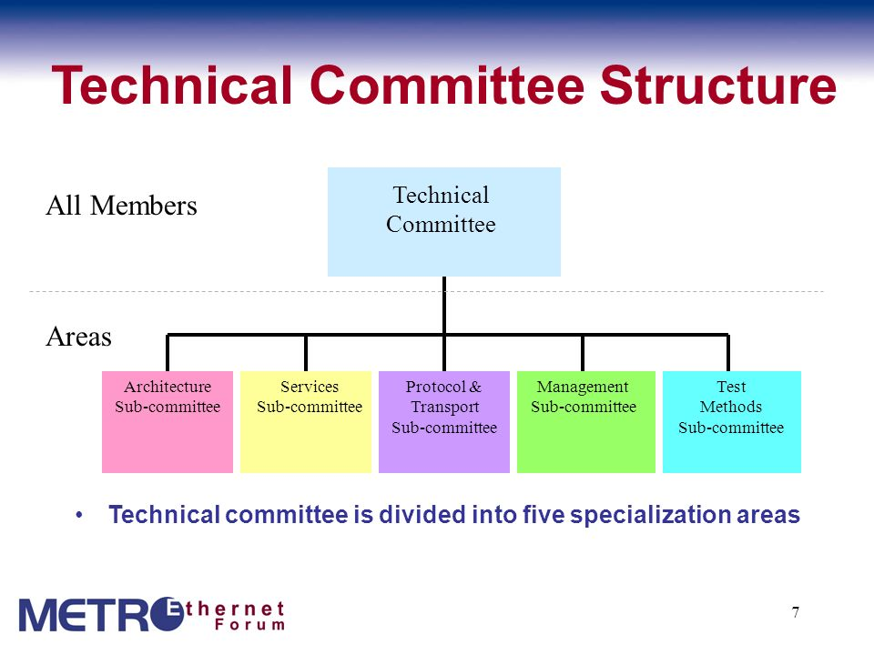 Technical Committee Structure