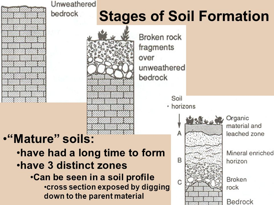 Weathering soil mass movements erosion ppt download for Origin and formation of soil