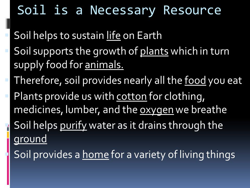 Soil is a Necessary Resource