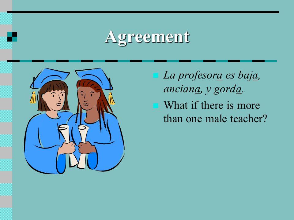 Agreement La profesora es baja, anciana, y gorda.
