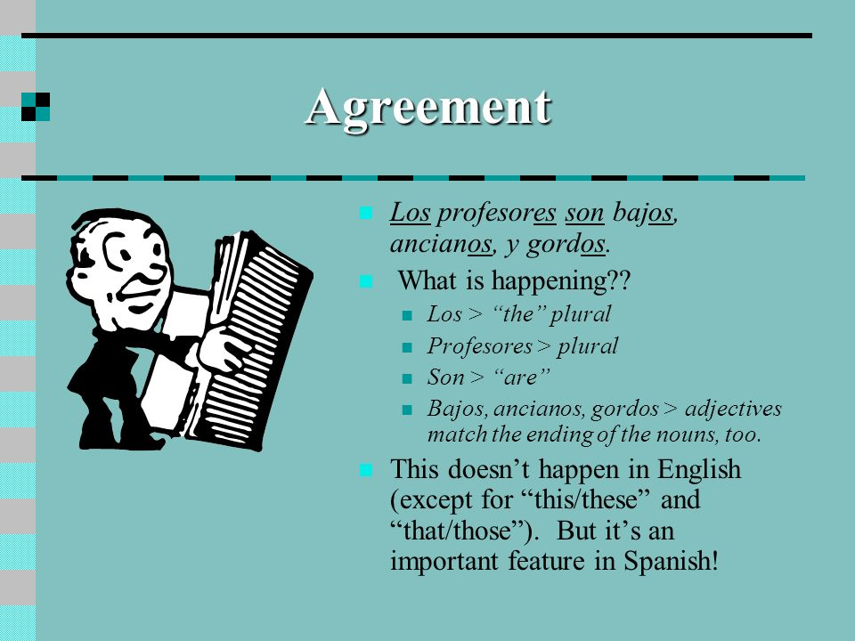 Agreement Los profesores son bajos, ancianos, y gordos.