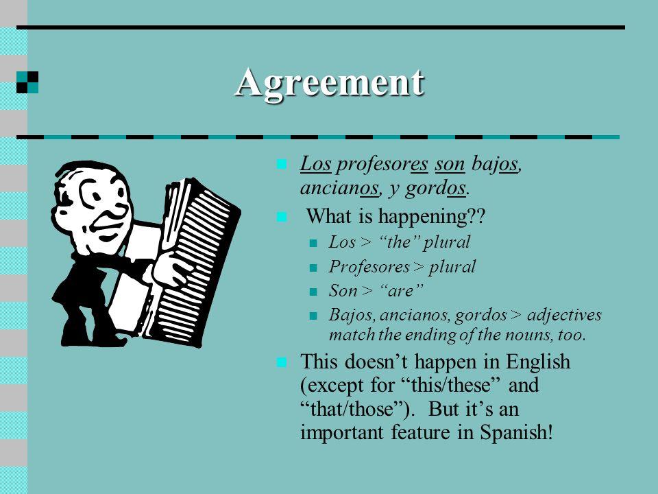 Agreement Los profesores son bajos, ancianos, y gordos.