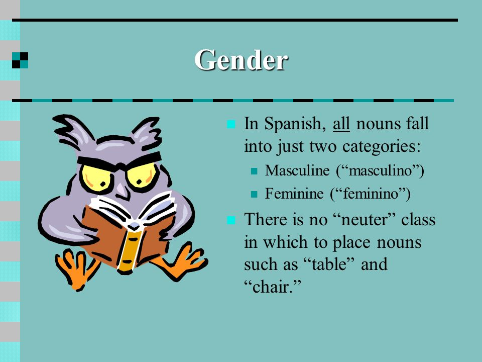 Gender In Spanish, all nouns fall into just two categories: