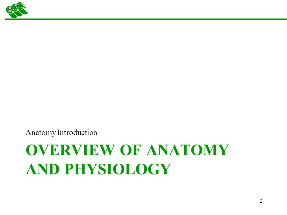 The Human Body: Anatomy and Physiology Terminology - ppt download