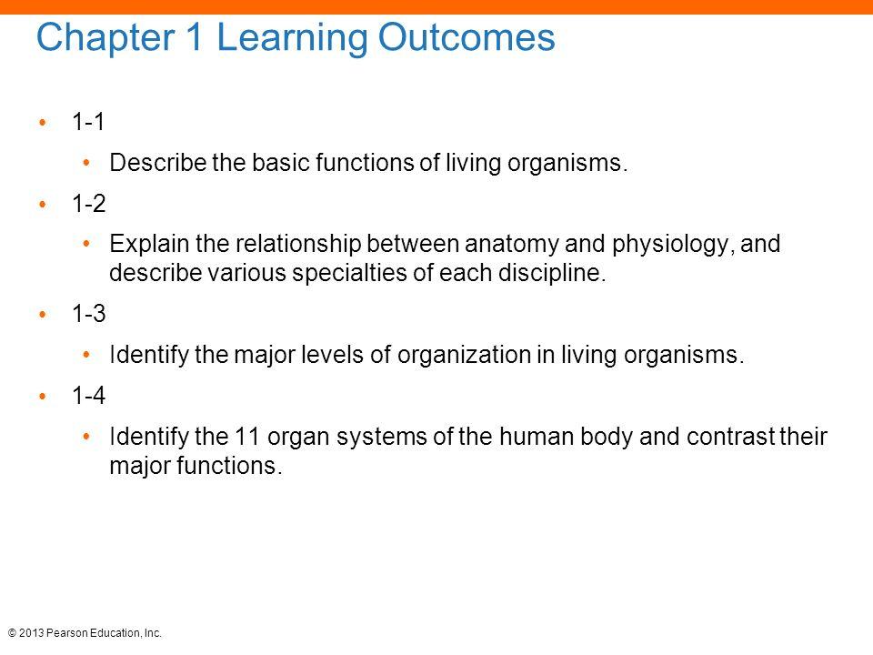 Vistoso Anatomy And Physiology Websites Adorno - Anatomía de Las ...