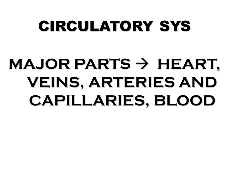 MAJOR PARTS  HEART, VEINS, ARTERIES AND CAPILLARIES, BLOOD