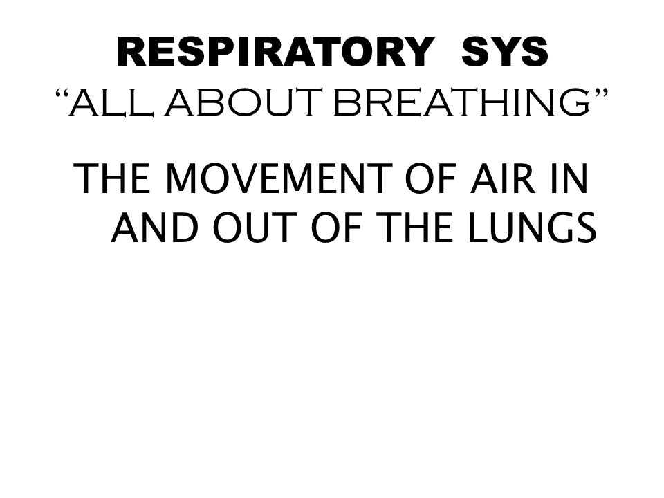 RESPIRATORY SYS ALL ABOUT BREATHING
