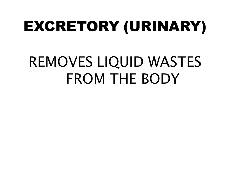 REMOVES LIQUID WASTES FROM THE BODY