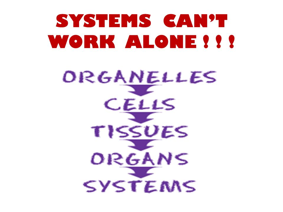 SYSTEMS CAN'T WORK ALONE ! ! !