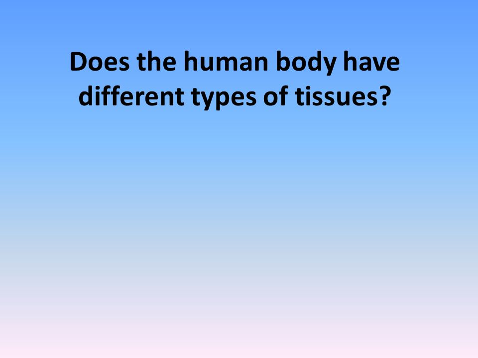 a look at the different types of human body tumours How many types of bone tumours are there  there are five different types of bones in the human body human bones are mainly differentiated based on various .