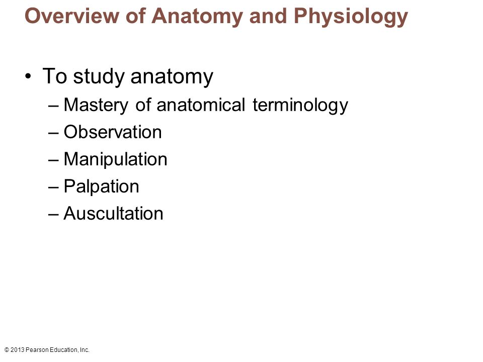 Overview of Anatomy and Physiology - ppt video online download